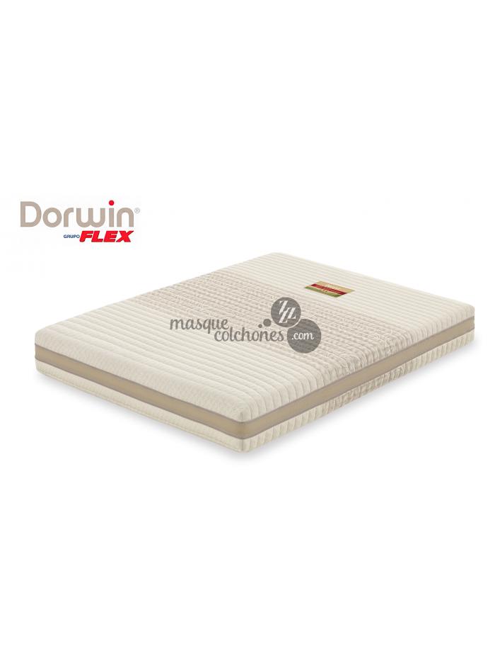 Somier Articulado Dorwin.Colchon Latex Natural Dorwin